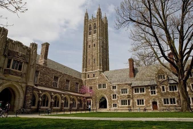 Princeton University top university